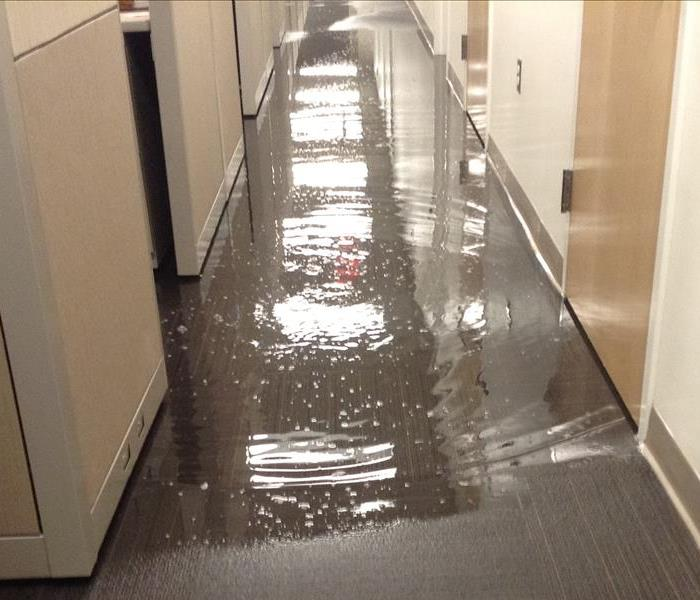 Government Building Water Damage in Miami Gardens, FL