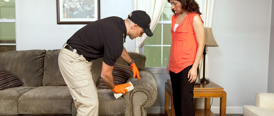 North Miami Beach, FL carpet upholstery cleaning